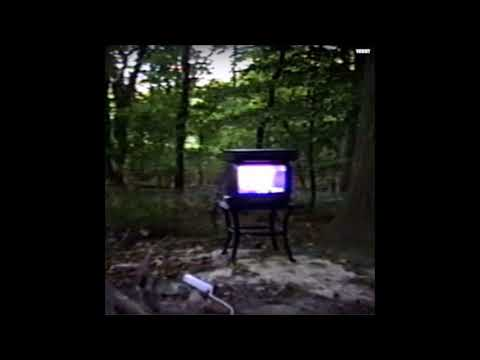 Bones - Branches (Audio)