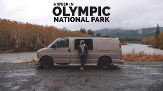 A Week in Olympic National Park, Washington   Vanlife America
