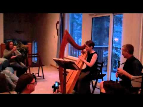 Watch harpist Anne Roos play with a bagpiper. She can teach you how to perform with other musicians!
