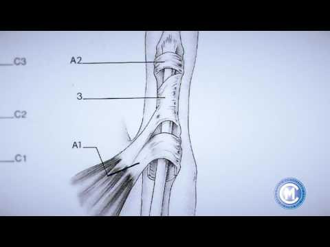 Massaggio al ginocchio saggio