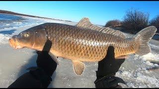 Рыбалка в лопотово форум