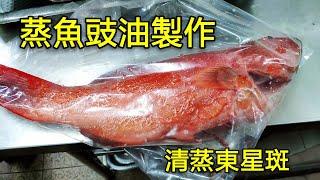 〈 職人吹水〉  蒸魚豉油 怎樣調配 ?就係咁簡單 清蒸東星斑Steamed Fresh Red Spotted Garoupa