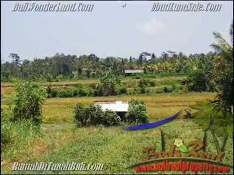 500 m2 Lahan  View  sawah gunung  di Sentral Ubud TJUB435