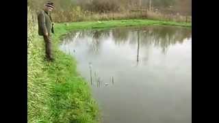 Рыбалка карася в дмитрове