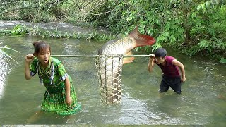 Survival skills: Primitive skills catch fish - Yummy cooking fish on stone - Eating delicious