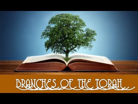 Branches of the Torah 1