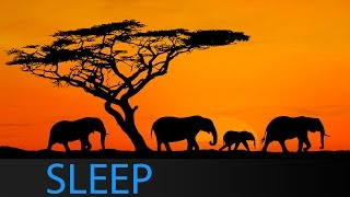 8 Hour Sleep Music Theta Waves: Relaxing Meditation Music for Deep Sleep with Binaural Waves ☯1647
