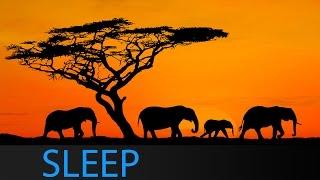 8 Hour Sleep Music Theta Waves: Relaxing Meditation Music for Deep Sleep with Binaural Waves ☯1647