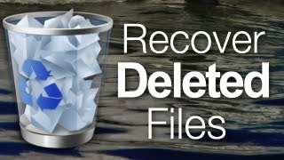 How To Recover Deleted Files From The Recycle Bin Without Installing Software