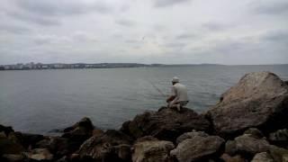 Рыбалка в щелкино