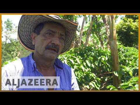 🇨🇴 Colombia's coffee workers despair over low wage l Al Jazeera English