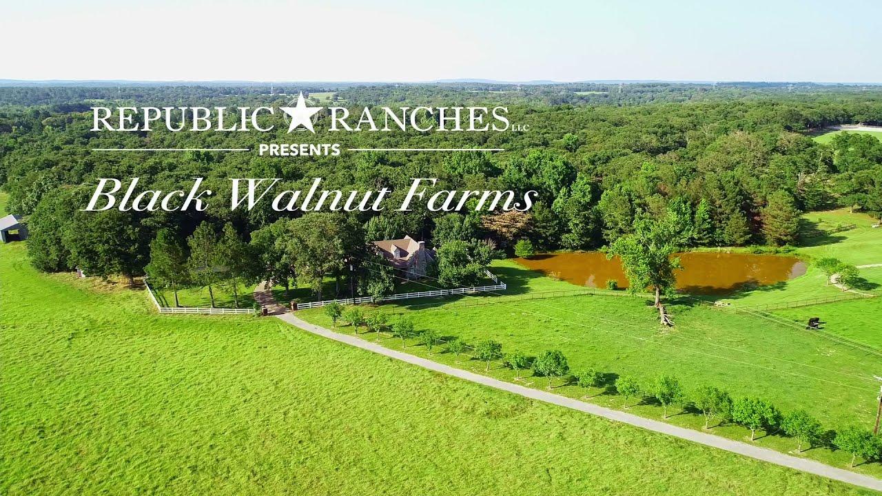 Black Walnut Farms