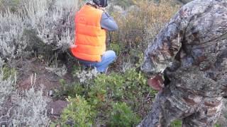 Stephanie Williams 2014 bull elk hunt part 1