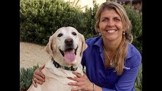 Dr. Katie Kangas, DVM and Dr Lee Seward, DVM discussing Nrf2 for animals