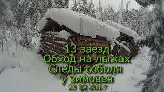 13 заезд Обход на лыжах Следы соболя у зимовья 1  23 12 2017