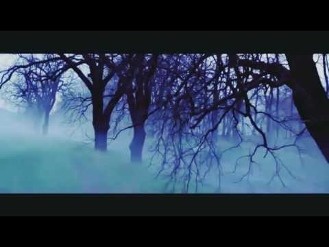 Wiksa254's Video 141714579895 nH0spf3str4