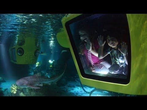 LEGO® City Deep Sea Adventure
