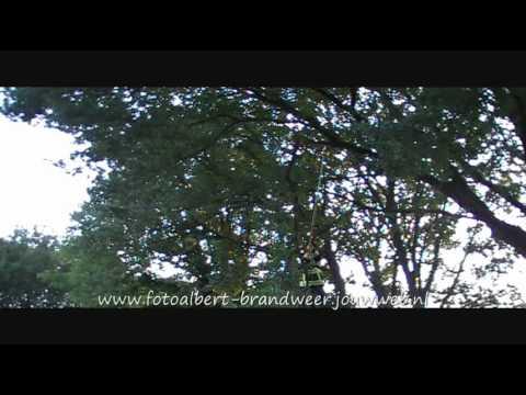Brandweer vierlingsbeek haalt tak weg in maashees 27-05-2011