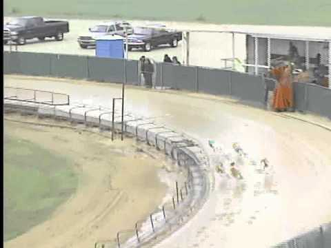 Race 22 Texas Greyhound Assc Main