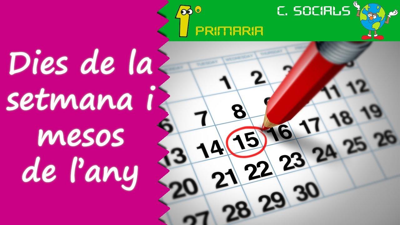 Ciències Socials. 1r Primaria. Tema 7: El dies de la setmana i mesos de l'any