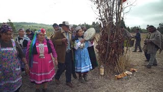 Mapuche: Saving Indigenous Language