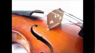Quartet No. 17 in B-Flat Major, K. 458 - Mozarteum String Quartet