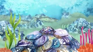 Restoring Shellfish Reefs (Ocean breef)