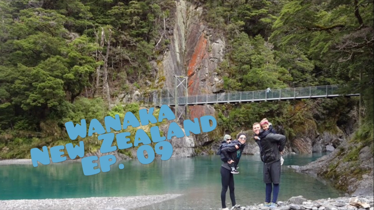SHEEP!! Gold Mining in Arrowtown & Blue Pools in Lake Wanaka New Zealand