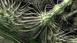 Jute - Opium