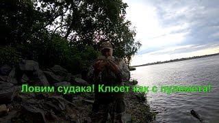 Где в новосибирске клюет рыба