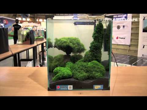 Aquascaping - Aquarium Ideas from ZooBotanica 2012, part 8