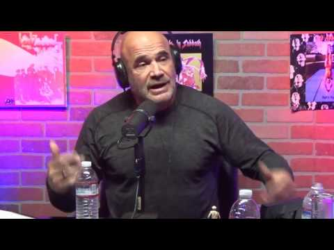 The Church Of What's Happening Now: #438 - Bas Rutten