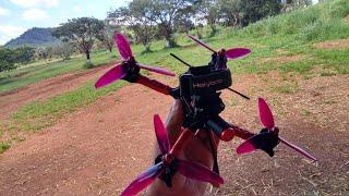 Emax Hawk 5 | Sábado 07/03/2020 | Freestyle FPV
