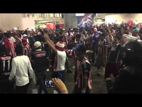 """Chivas -la irreverente"" Barra: La Irreverente • Club: Chivas Guadalajara"