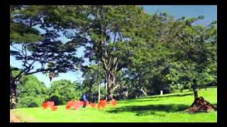 Tuff B - Endibota (Ugandan Music Video)