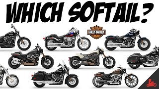 The Harley-Davidson Softail - Which One?!