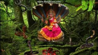 Nagavlli Rani - Siva Sakthi Urumi Melam