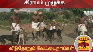 கிராமம் முழுக்க  வீடுதோறும் வேட்டைநாய்கள்  | SpecialStory | Thanthi TV