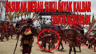 MERINDING ...Pasukan Merah Suku Dayak Kalbar.. Yang Tidak Kuat Jangan Nonton