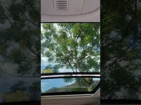 Vídeo de Jeep Compass