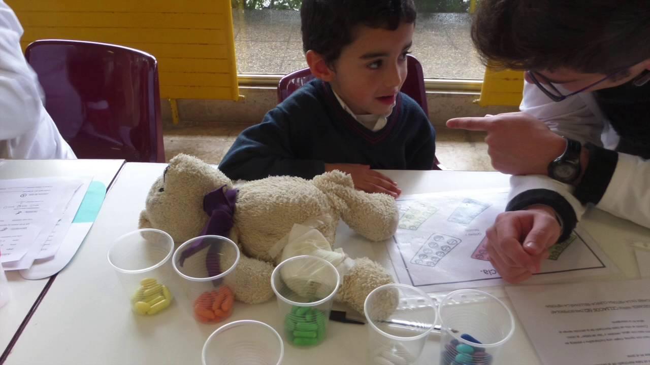 Hospital de ositos - Infantil Torrevelo-Peñalabra