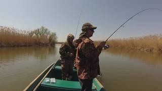 Рыболовная база - остров колочный