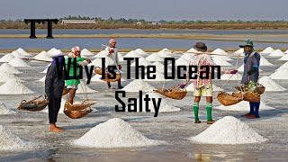 Why Is The Ocean Salty Can We Live Without It