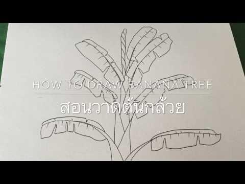 ประเภท saprophytes อำนาจจุลินทรีย์และปรสิต