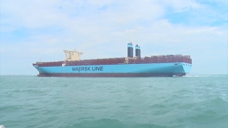 Siêu tàu 18.000 TEU lớn nhất thế giới cập cảng Quốc tế Cái Mép