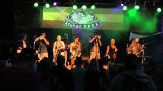 Video REGGAE AREA 2013 - SKA'N'DAAL MUSIC ENSEMBLE - LIVE