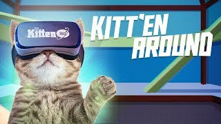 Kitten TV 360