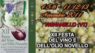 preview picture of video 'VINO NOVELLO 2011'