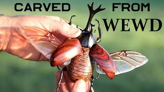 How To Carve a Realistic beetle out of Wewd Video