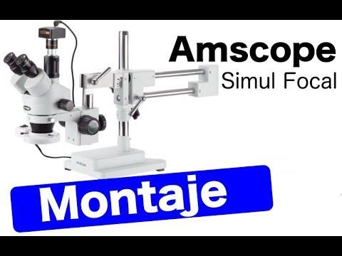 Microscopio Estéreo Amscope Simul Focal 90X Montaje